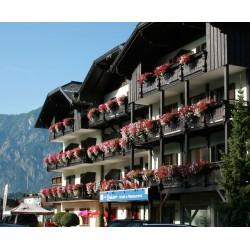 Hotel Restaurant Lindwurm