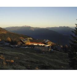 Sattleggers Alpenhof  Emberger Alm 2