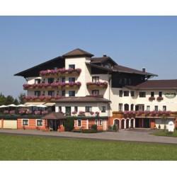 Hotel Berghof Dachsteinblick
