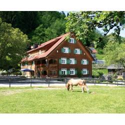 Hotel*** Gasthaus Schäfle